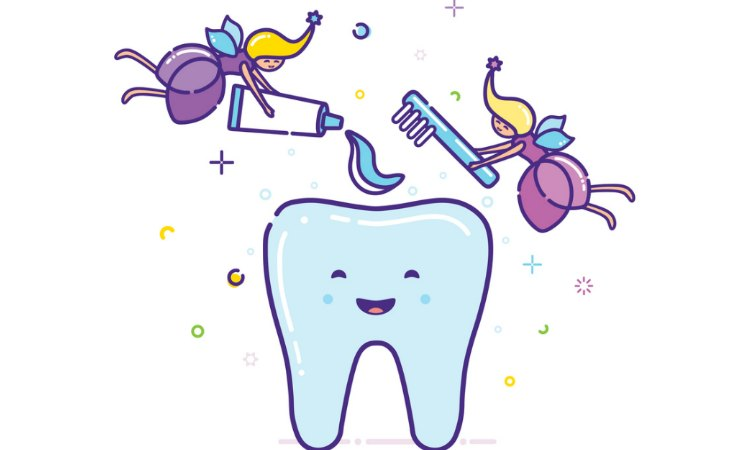 Image result for tooth and fluoride pictures